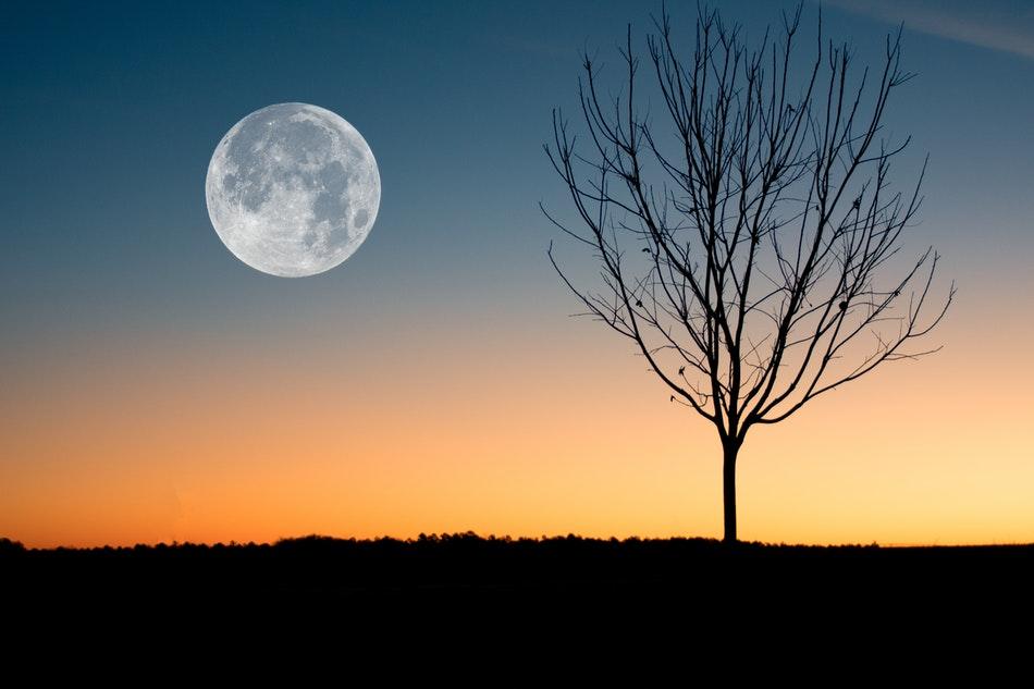 Photo of La Luna muove i continenti: la scoperta di una ricerca italiana